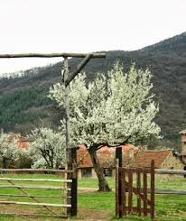Село Макоцево.